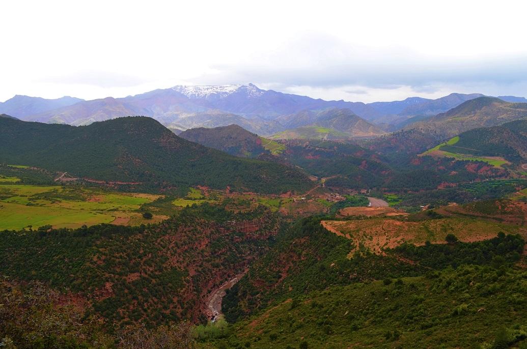 pistes berbères maroc (maria-darii-37405-unsplash)